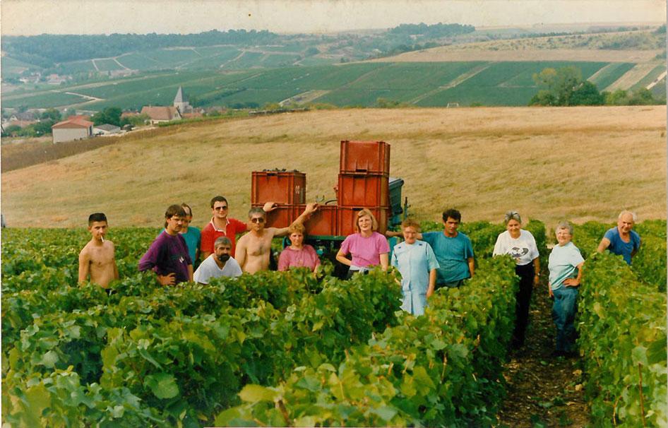 vendanges Soret Devaux1993